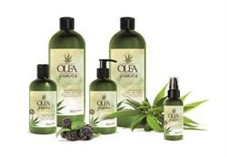Набор OLEA GREEN Шампунь 300мл+Крем для волос 300мл+Масло конопли и ежевики 100мл - фото 5761